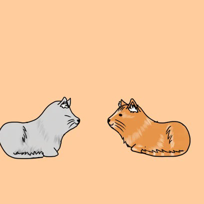 cat walkのユーザーアイコン