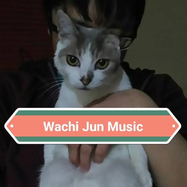 Wachi Jun@林原めぐみさんの楽曲耳コピ完了✨😺✨のユーザーアイコン