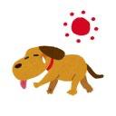 春の日の犬のユーザーアイコン
