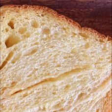 パンのユーザーアイコン
