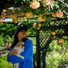 花咲猫with鳥ーズ#1日1曲のユーザーアイコン