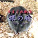 桜華❀銀のユーザーアイコン