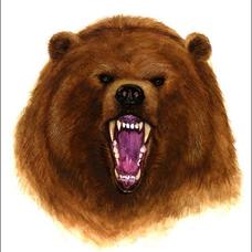 森野熊男のユーザーアイコン