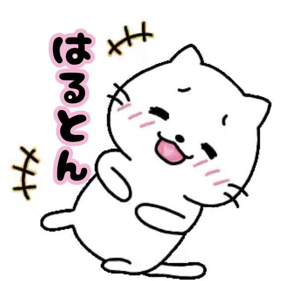 はるとん🐈🐾🐾's user icon