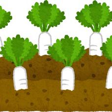 畑のユーザーアイコン