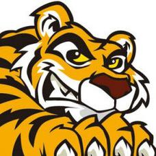 Ricot Tigerのユーザーアイコン