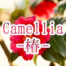 【実力派】和曲ユニット『Camellia-椿-』メンバー募集中のユーザーアイコン