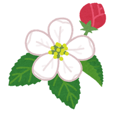 Mimika / 美々花のユーザーアイコン
