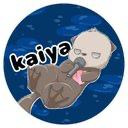Kaiyaのユーザーアイコン