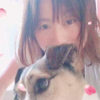 Akimamaのユーザーアイコン