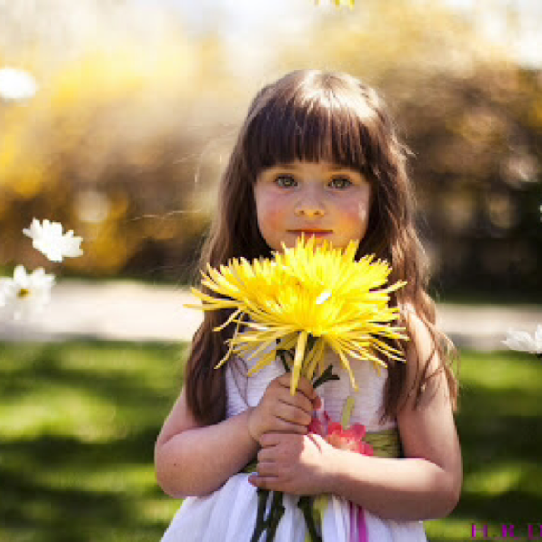 Sunflowerのユーザーアイコン