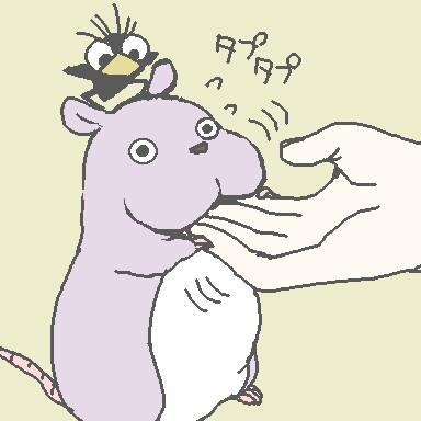 まゆ坊@生音伴奏のユーザーアイコン
