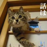 JUNAS☆@基本一発録りのユーザーアイコン
