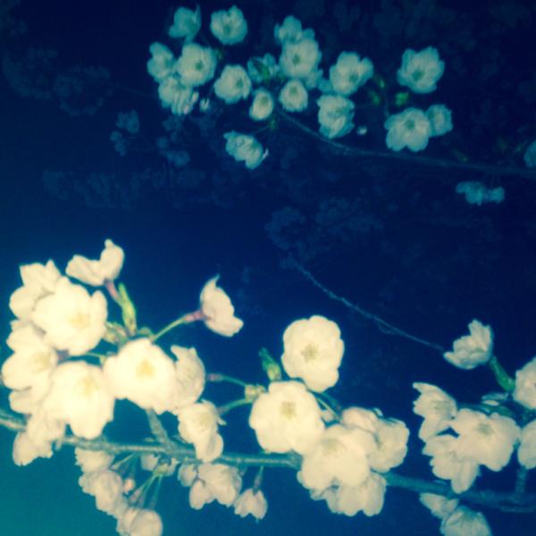 咲良*のユーザーアイコン